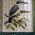 5A Tote blue kingfishers detail