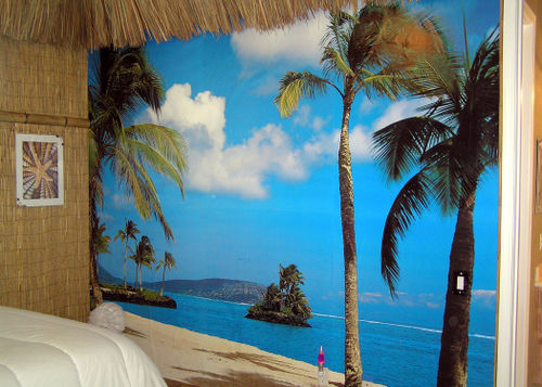 Tiki-Hut-bedroom-before