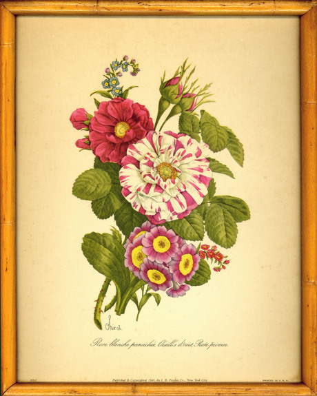 Antique_roses_print_scan_2