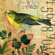 Yellow_bird_2_altered_ledger_pape_4